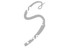 The Silver Lady